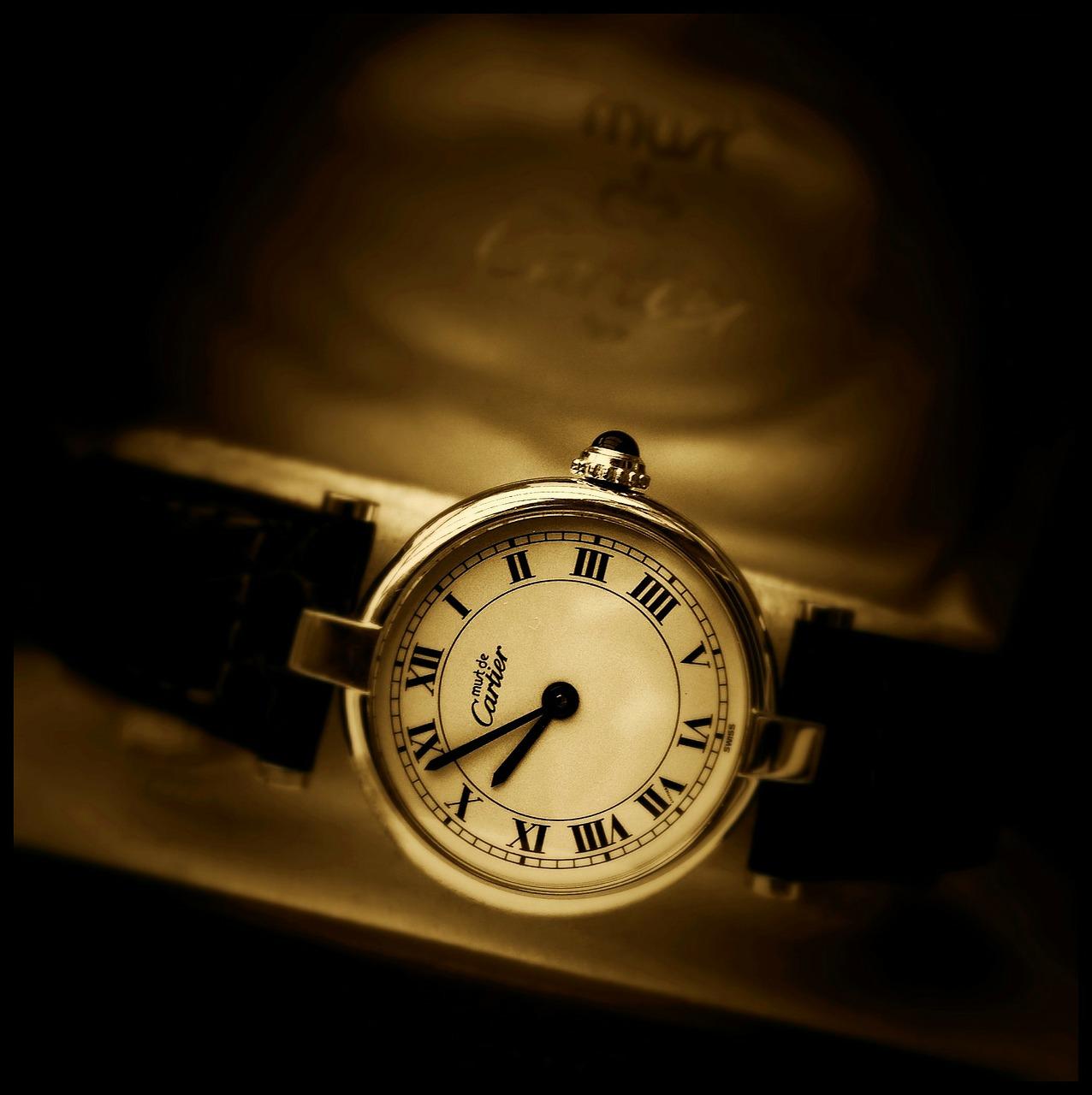 日常のお手入れ・カルティエ・腕時計2