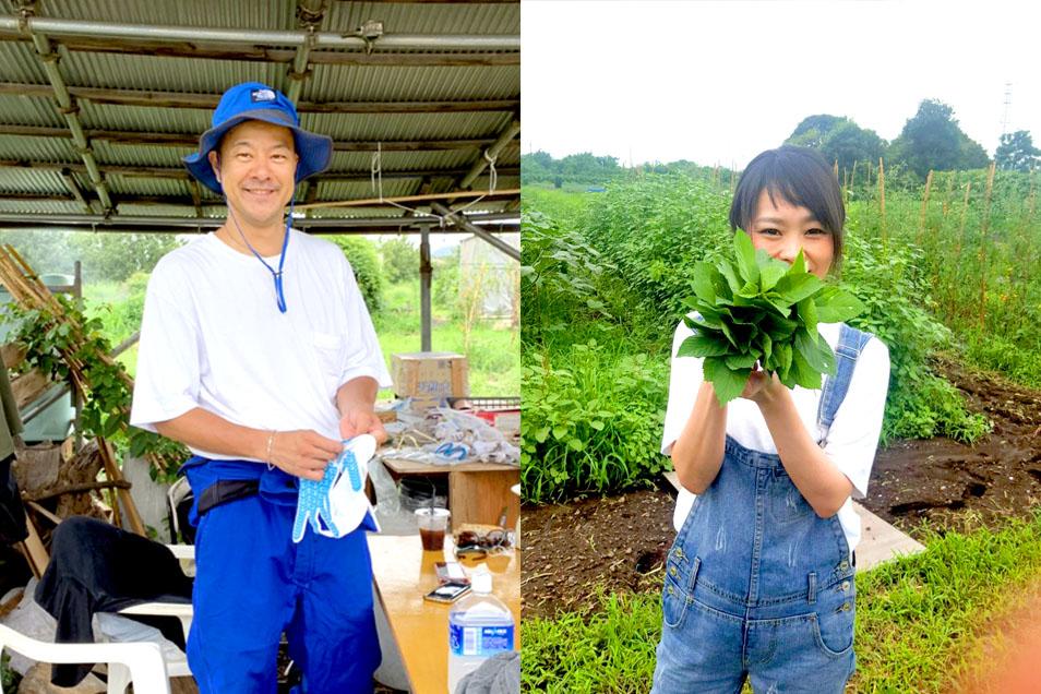 カブと大根種まき・じゃがいもの収穫ボランティア
