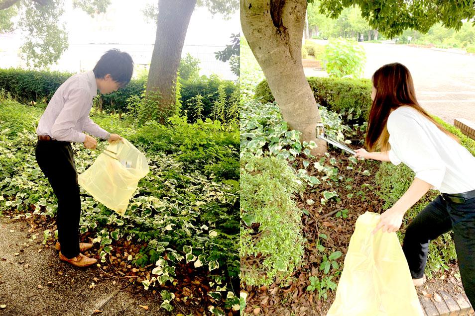 公園の清掃活動ボランティア