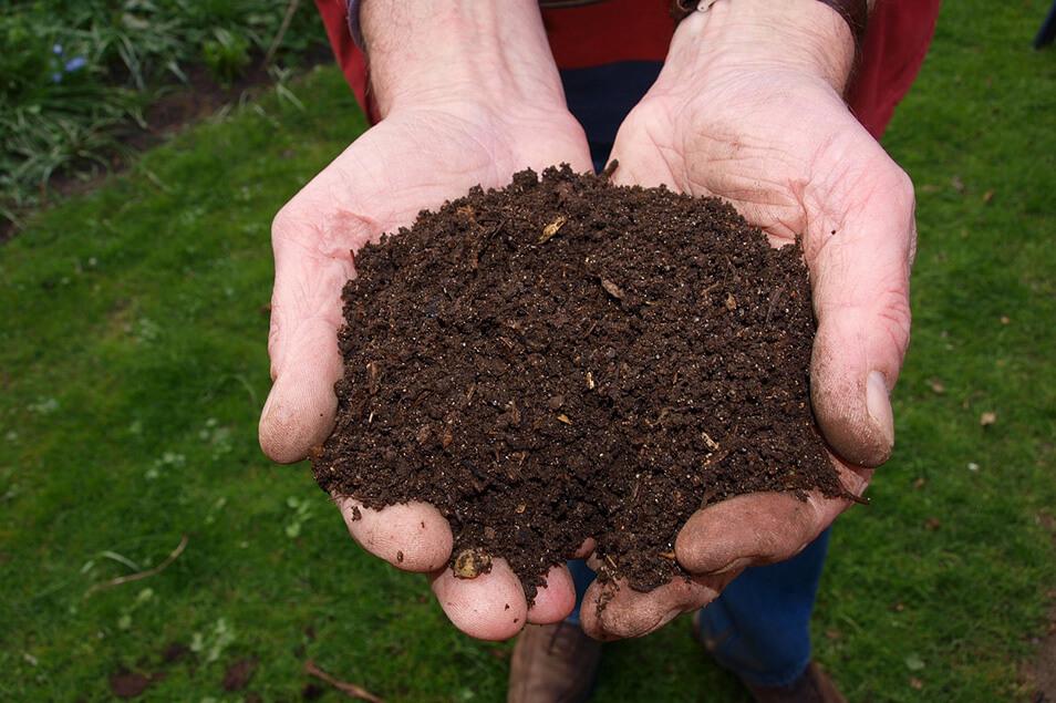 コンポストで作るエコ堆肥!ゴミの減量やガーデニングに