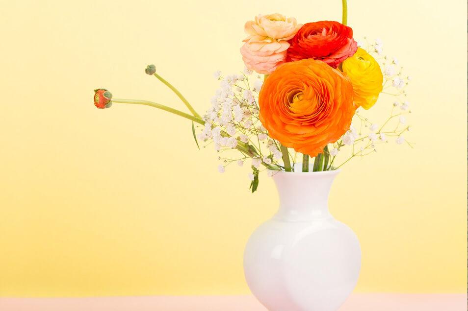 生活に彩りをプラス♡お花のサブスク