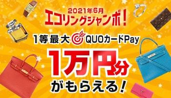2021年6月エコリングジャンボ!最大QUOカードPay1万円分がもらえる!
