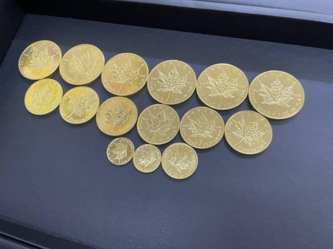 メイプルコイン・各サイズを買取 名古屋 名古屋西店