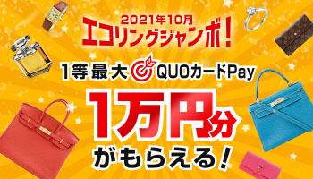 2021年10月エコリングジャンボ!最大QUOカードPay1万円分がもらえる!
